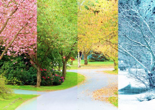 Do the Four Seasons Have an Effect on Your Mental Health?